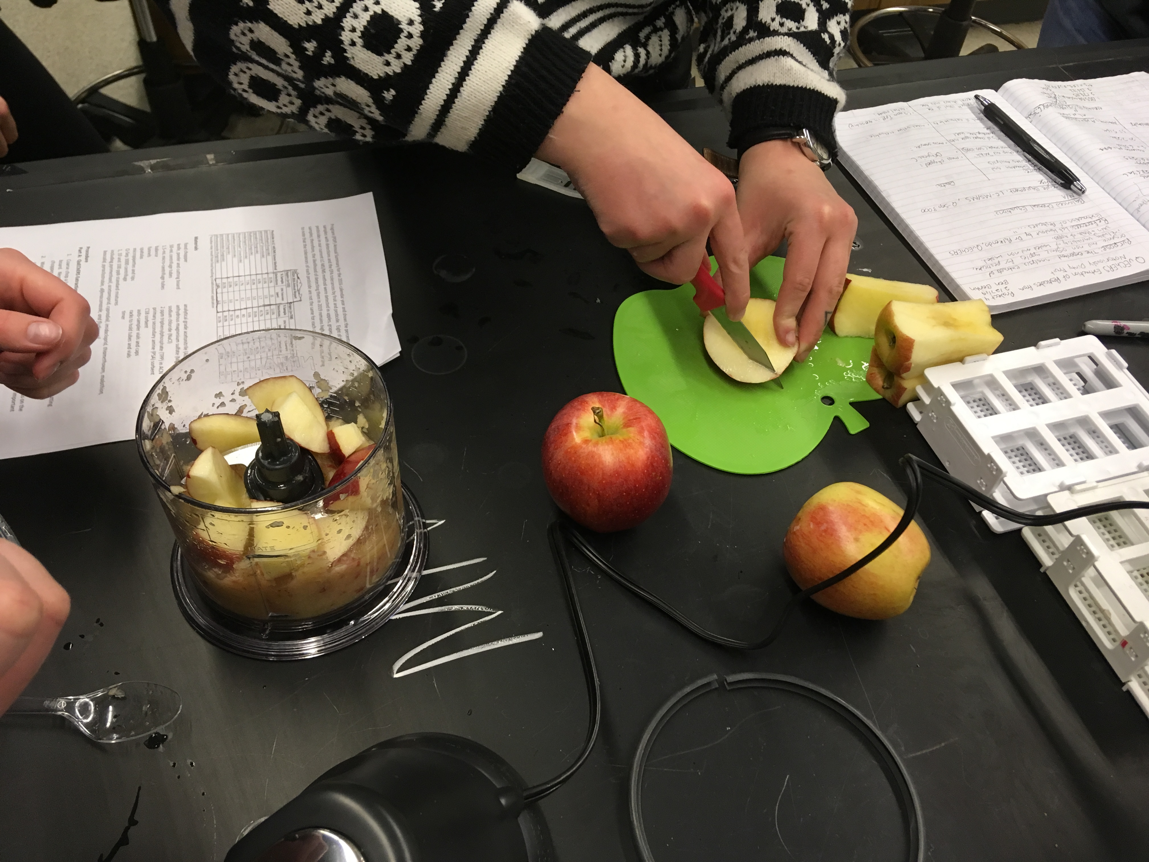 chopping apples and putting into a blender on a lab benchtop