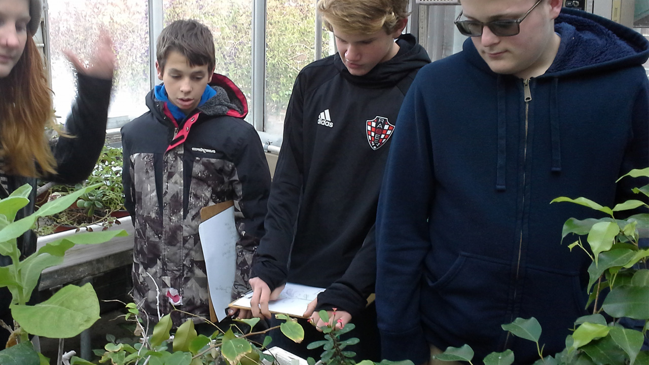 Scouts examine plants in the greenhouse for plant science merit badge.