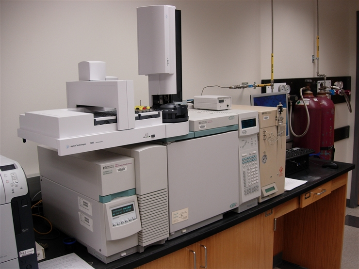 Agilent 6890 gas chromatograph with 5973 mass spectrometer