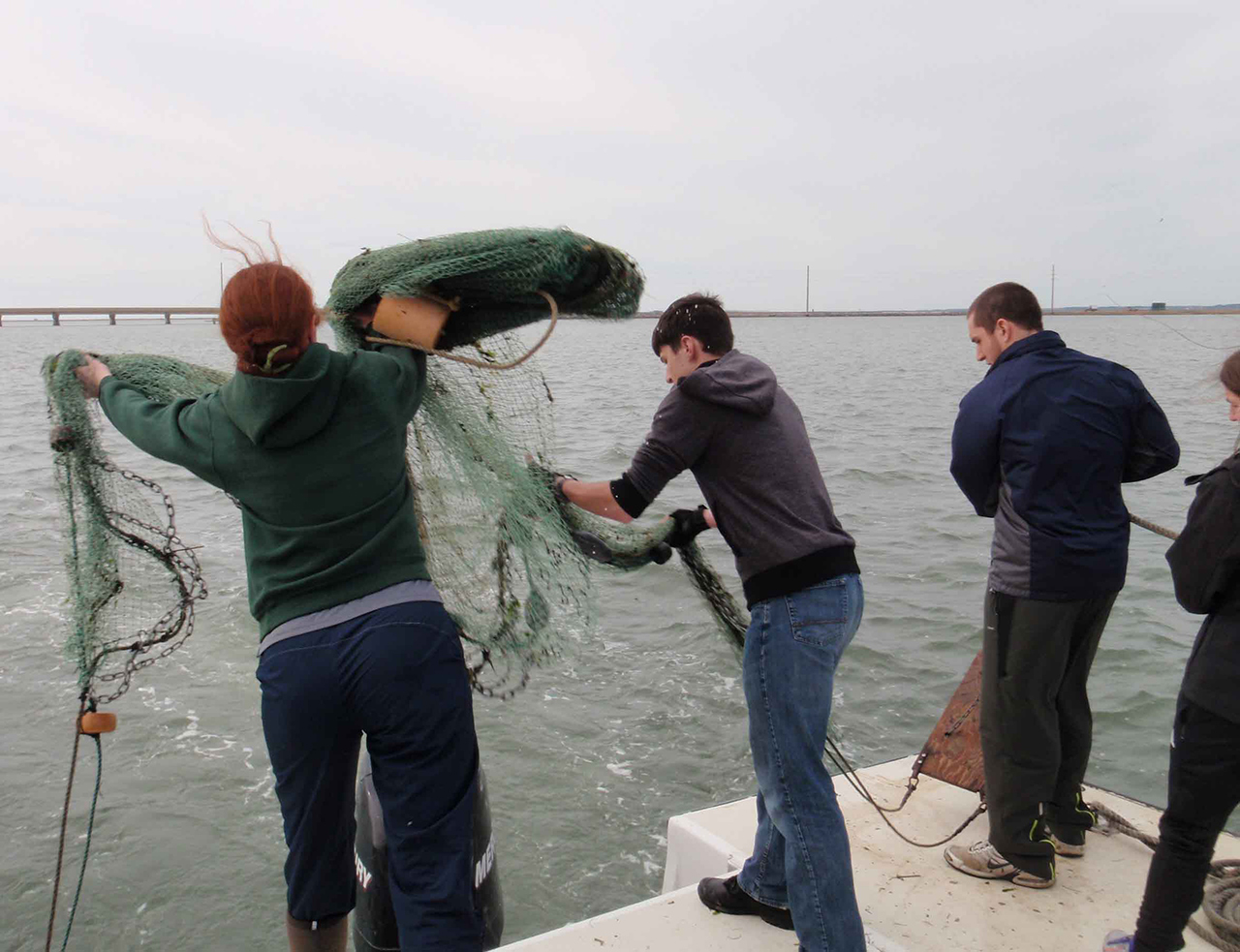 Students throwing a net