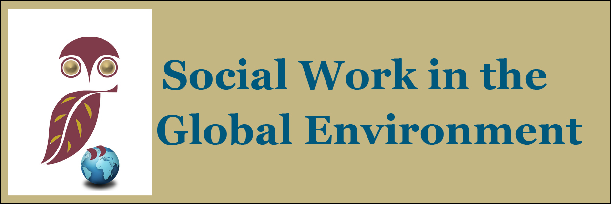 Social Work in the Global Environment