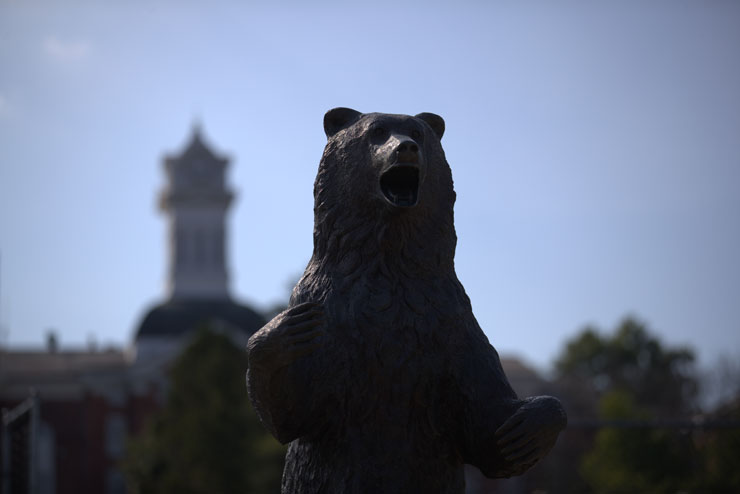 Bear with Old Main tower in background