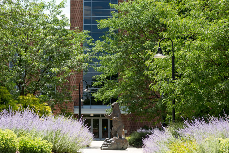 Walkway leading into Boehm Science Center. Golden Bear statue stands tall in center, lavender and other foliage line the sidewalk.