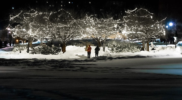 An area of the snow covered DMZ is illuminated by a grove of trees adorned in strings of white lights. Two individuals are standing in under the lit trees.