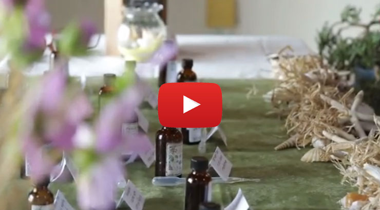 Screenshot of the Wellness Day highlight video. Image of a table setting with flowers.