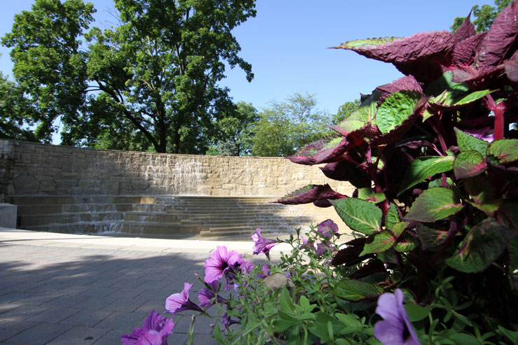 Purple petunias along with green and purple foliage adorn the right side and corner of the image, with Kutztown University's Alumni Plaza fountain in the background.