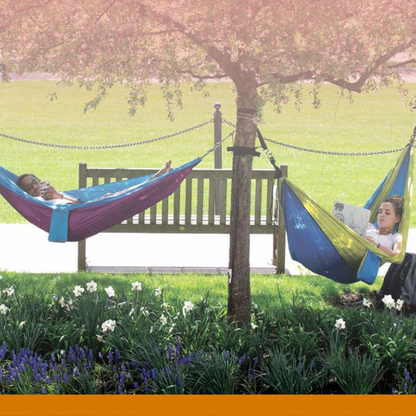 an illustrated graphic of a dark skin dark hair female looking at a laptop with the KU logo on the screen while on a beach towel on the beach with some shells and a beach ball in the background as well as blue ocean waves hitting the shore