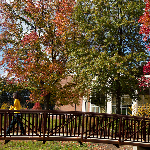student walking across bridge with fall trees