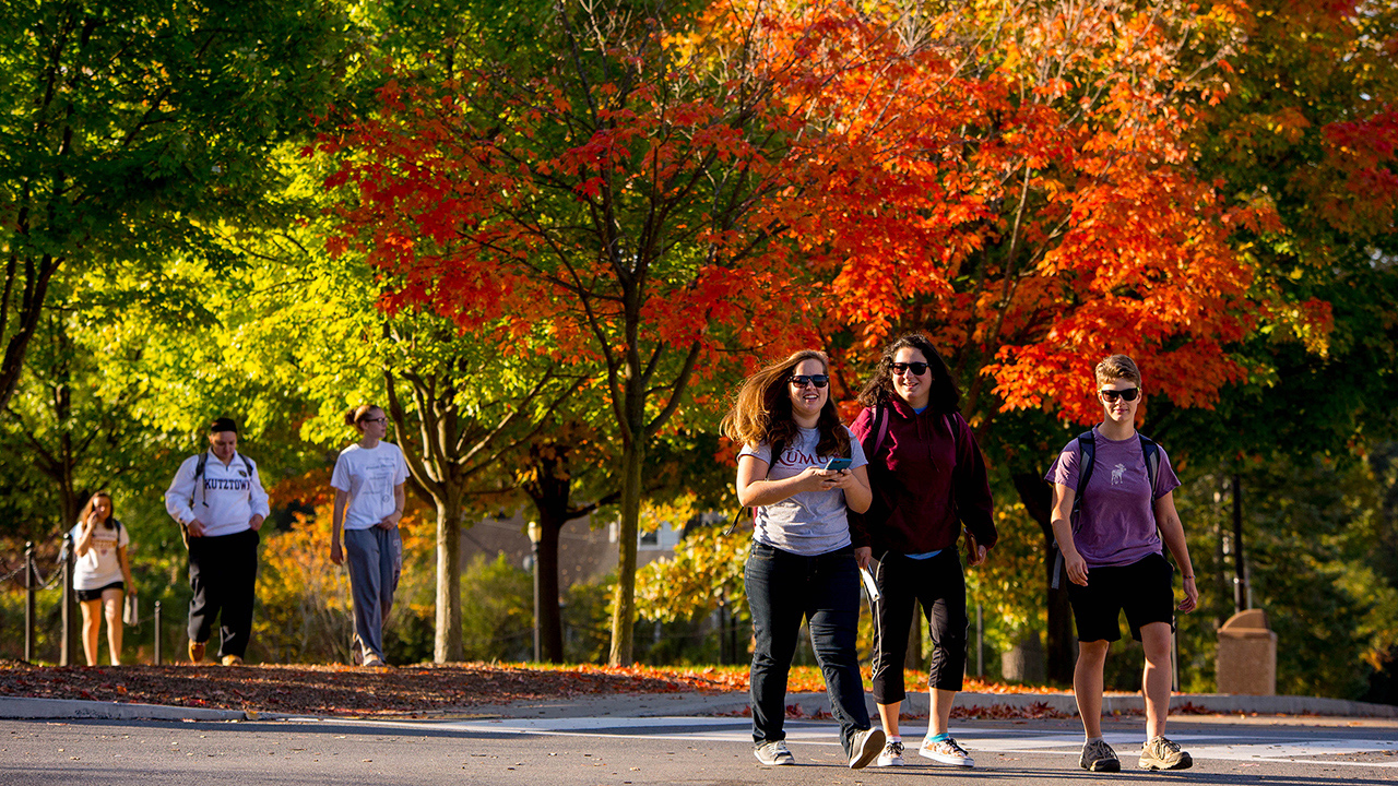 students walking together with fall trees in the background