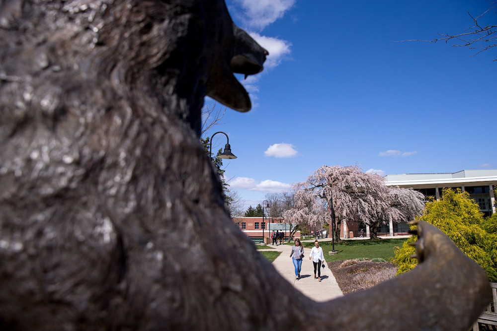 Bear Statue with students walking